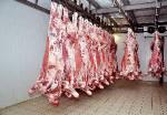Мясо говядины, полутуши от производителя