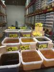 Мёд и продукция пчеловодства